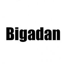 Bigadan