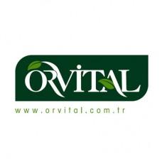 Orvital